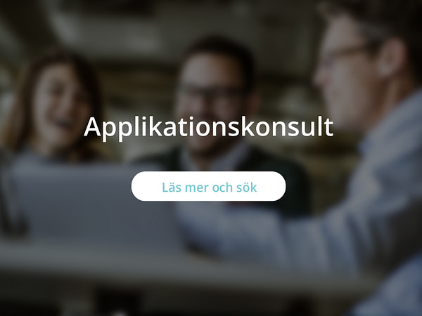 Applikationskonsult