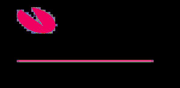 Visma Gold Certified Partner